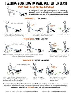 All The Tips And Tricks About Dogs You Need * Check out this great article. #DogsTraining #dogtipsandtricks