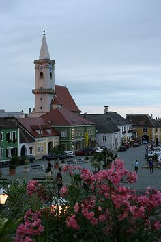 Rust in Burgenland Austria.  Storks make their nests on the chimneys of every building.