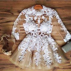Classy Sheer & Lace Mini Dress - New Arrival!