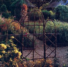 fence made from saplings | ... side by side to make a tall, decorative fence for growing vines