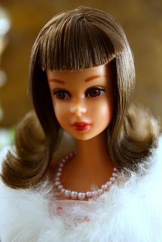 Francie, Barbie's MODern Cousin by ernestopadrocampos, via Flickr