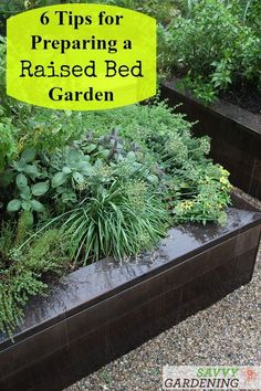 6 tips for planning a raised bed garden from the author of the book Raised Bed Revolution, Tara Nolan. #raisedbedgardening #vegetablegardening