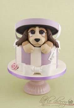 Lady and the Tramp in the hatbox
