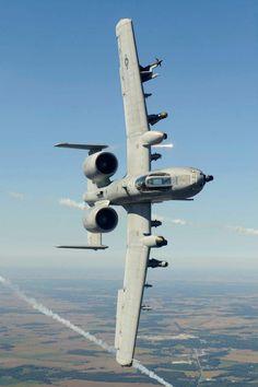 Titanium Rain - A-10C 82-0661 163 FS 122nd Fighter Wing Fort...