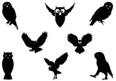 Image result for owl silhouette
