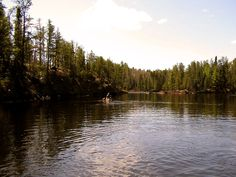 Kawishiwi River // April Afternoon // BWCA // Northern Minnesota