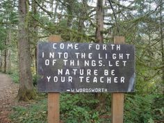 come forth into the light of things. let nature be your teacher. ~ w. wordsworth