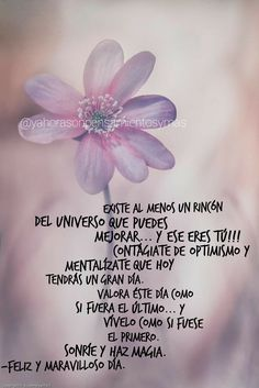 Morning Love Quotes, Good Morning, Good Day Messages, Spanish Greetings, Daily Inspiration Quotes, Spanish Quotes, Happy Birthday, Inspirational Quotes, Zen