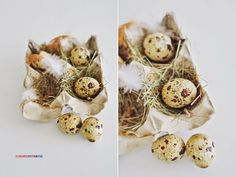 easter decoration  , eggs