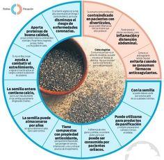 Todo sobre la chía en una completa infografía | Alimentación saludable | Scoop.it