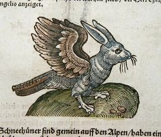 Chimera --  Pliny the Elder's bird bunny (Naturalis Historias) as illustrated by Josh Amman in the 16th century.