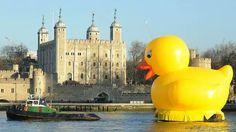 Pato gigante Londres