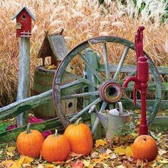 🧡luv this-Country🧡look-pumpkins🖤wagon wheel🧡🖤🧡🖤🧡🧡🧡 Country Look, Country Fall, Country Living, Country Charm, Country Roads, Autumn Decorating, Happy Fall Y'all, Fall Harvest, Harvest Time