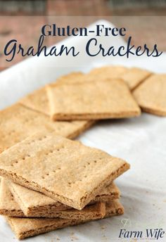 These gluten-free graham crackers taste just like the real thing! Oh my gosh, I can't believe how good they are!