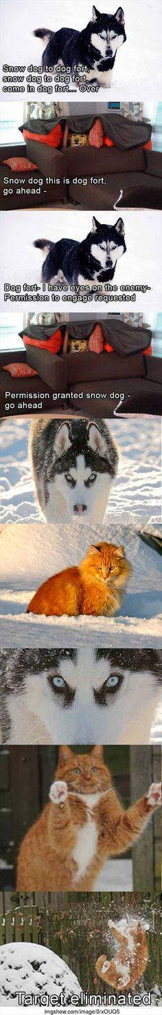 The Amazing Adventures Of Snow Dog - 9 Pics