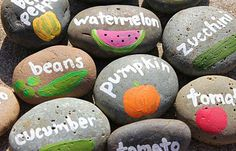 15 Garden Crafts for Kids - I especially like the painted rock plant markers & the garden sensory table!