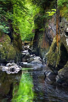 Fairy Glen in Spring, Wales