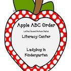This is a fun center that I wanted for my Apple Unit and Back to School fun. Students can match Letter to Picture sound apple. Students can also pu...