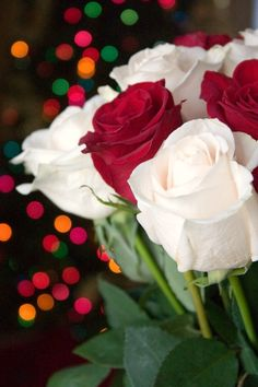 Fresh Flowers for the Holidays with Bouqs