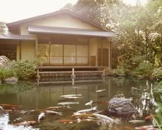 Charmant How To Keep A Backyard Pond Clean