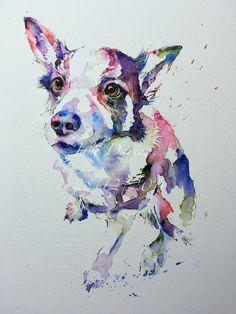 Pet portrait of a Collie dog painted by watercolour artist Jane Davies