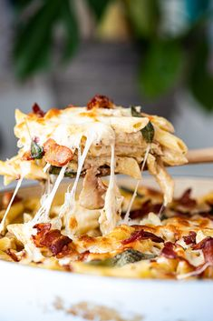 Creamy bacon sauce makes this pasta bake a delicious, comforting dinner. This is the perfect recipe to make-ahead and feed a crowd. Baked Pasta Recipes, Bacon Recipes, Cheese Recipes, Creamy Pasta Bake, Bacon Pasta Bake, Nutritious Snacks, Perfect Food, How To Cook Pasta, Pasta Dishes