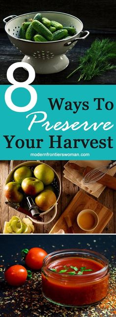 Ways To Preserve Your Harvest Modern Frontierswoman - Food Preservation Is A Homesteaders Most Valuable Skill After All That Work Planning Planting Tending And Harvesting Your Garden The Last Thing You Want Is For Your Bounty To Go To Waste Learn Mo Vegan Quesadilla, Canning Tips, Canning Recipes, Grow Your Own Food, Food To Make, Pasta Sauce, Dehydrated Food, Small Farm, Preserving Food