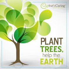 Plant Trees, Help the Earth. Go Green and go vegan Save Mother Earth, Save Our Earth, Go Green Slogans, Go Green Posters, Earth Quotes, Green Earth, No Plastic, Green Life, Meaningful Words