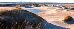 North Carolina Bike Trails - The Outer Banks.  Hoping we can take our bikes next trip, Paul Garverick (my best biking buddy) :)