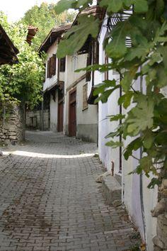 Safranbolu - leafy lanes