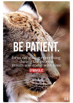 Focus + patience = success