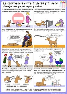 Convivencia entre perro y bebé. Etocómics. Etología Veterinaria, con guión de Pablo Hernández y Silvia de la Vega, e ilustraciones de Patricia de la Vega.