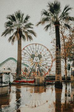 Disneyland California, Disney California Adventure, Images Disney, Disney Pictures, Photo Wall Collage, Picture Wall, Disney Trips, Disney Parks, Disney Vacations
