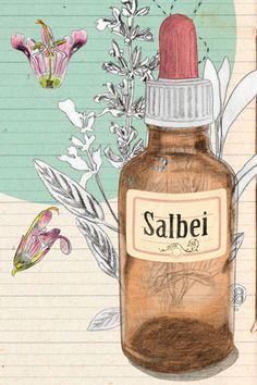 birgit lang, illustration: aromatherapie