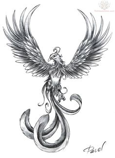 I think some variation of a phoenix tattoo would be cool. I'd like to encorporate into the design a photo I took that resembled a phoenix. I like what it stands for - rebirth and rising from the ashes. Lots of black. Vivid flames. Maybe a little more menancing than this with wings extending more horizontally. Upper back.