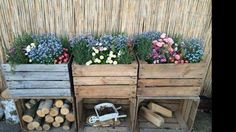 Kistjes in de tuin
