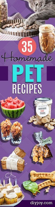 DIY Pet Recipes For Treats & Food - Dogs, Cats & Puppies Will Love These Homemade Products & Healthy Recipe Ideas - Peanut Butter, Gluten Free, Grain Free - How To Make Homemade Dog & Cat Food Puppy Treats, Diy Dog Treats, Homemade Dog Treats, Dog Treat Recipes, Dog Food Recipes, Homemade Cookies, Food Tips, Food Ideas, Healthy Recipes