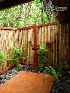 outdoor shower-plants along inside edge