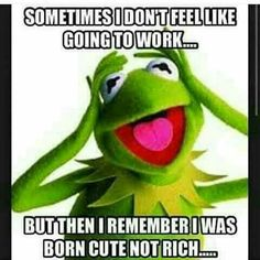 Sometimes I don't feel like going to work. But then I remember I was born cute not rich.
