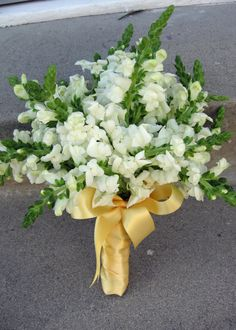 A spring bridesmaid bouquet. Snapdragons are special to me and they are elegantly beautiful