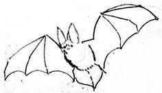 Рисунок летучая мышь