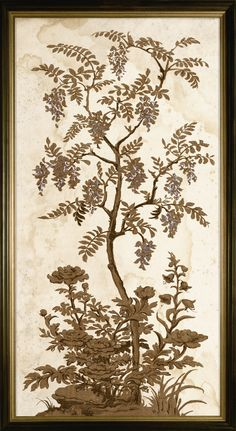 Tree of Life 2, Silverleaf | Natural Curiosities