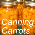 Great canning website