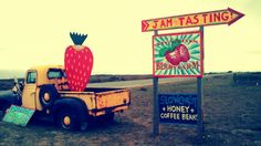Swanton Berry Farm in Davenport, CA @RothCheese #AdventureAwaits