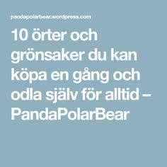 10 örter och grönsaker du kan köpa en gång och odla själv för alltid – PandaPolarBear