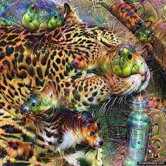 """""""Sleeping in a Bowl"""" This Jaguar is actually curled up in a bowl sleeping   at the San Diego Zoo. @craftygal39 took this wonderful picture! Check out her page for awesome shots like this and more!  #deepdream #trippy #psychedelic #share #ipad #colorful #Xfacemanx #abstract #art  #Sandiego #photo  #pic  #picture  #meditate #beautiful #weed  #psychedelia #picoftheday #photooftheday #color #surreal  #video  #eyecandy  #beautiful #FPV #fractal #glitch #editing #quadcopter #pictureoftheday by…"""