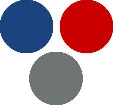 Royal Blue and Red Light Summer Color Palette