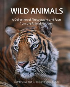 Wild Animals: A Collection of Photographs and Facts from the Animal Kingdom