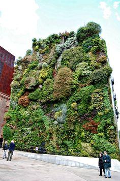 jardín vertical Caixaforum en pleno corazón de Madrid