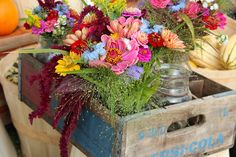 The Colors of Harvest | Downeast Thunder Farm